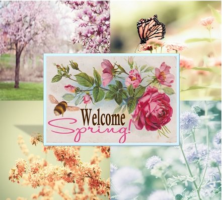 Welcome Spring Image
