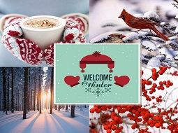 welcome winter 255x190