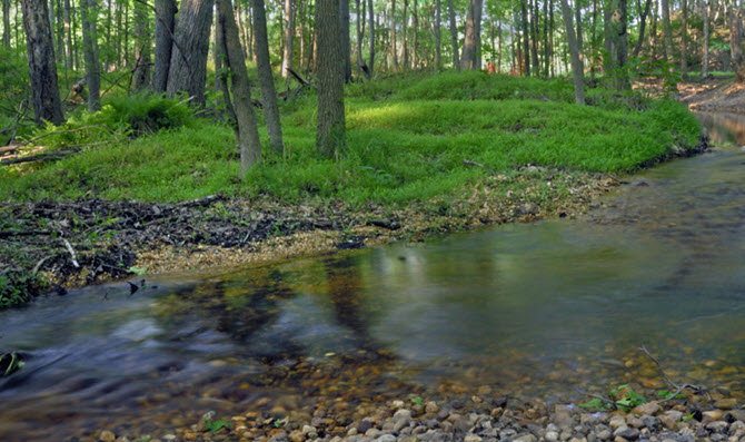 Plainsboro Preserve Creek and Woods