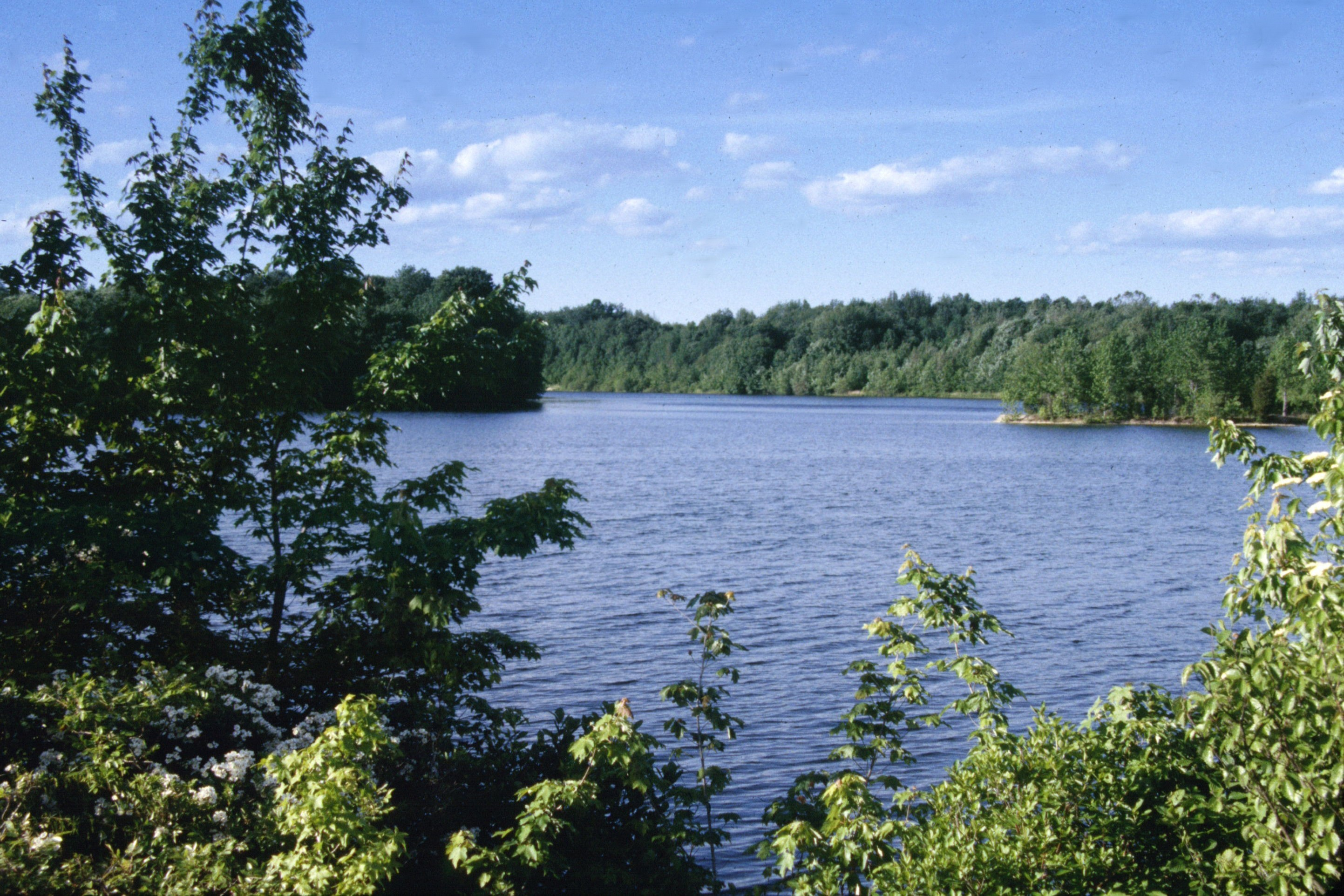 Plainsboro Preserve Lake